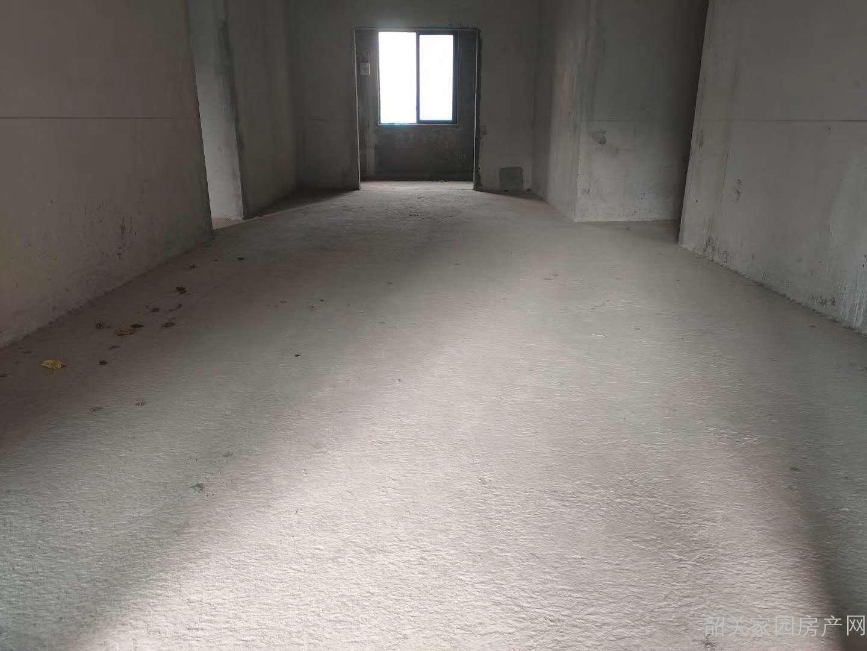 超靓超长阳台24米碧桂园泊林电梯入户东南