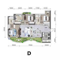 3室2卫2厅,D户型三室两厅两户